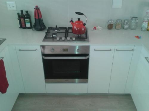 Monte Vista-stove unit (1)